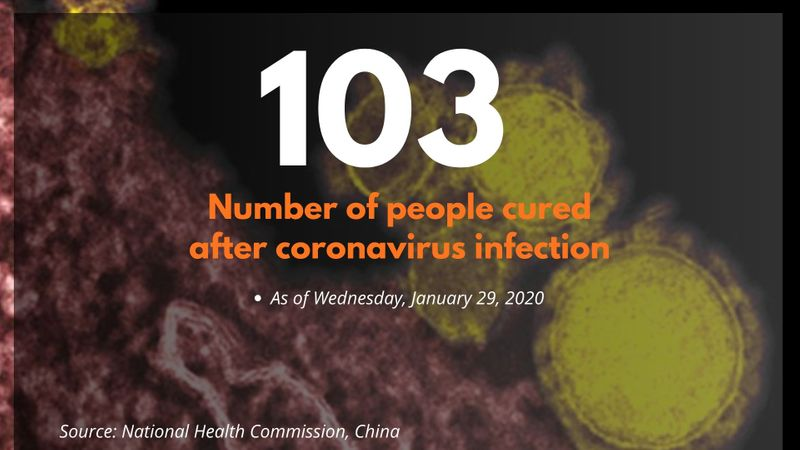 Corona virus by the numbers