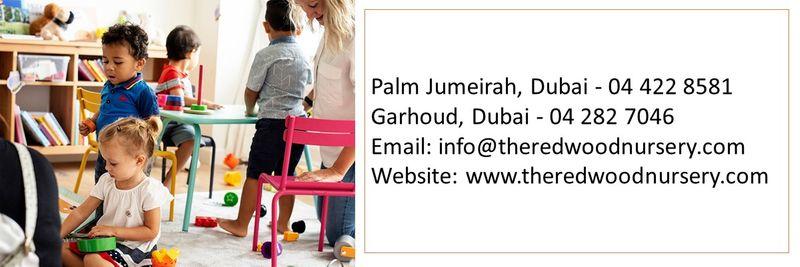Nurseries in UAE 20
