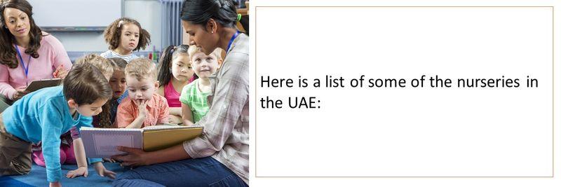 Nurseries in UAE 3