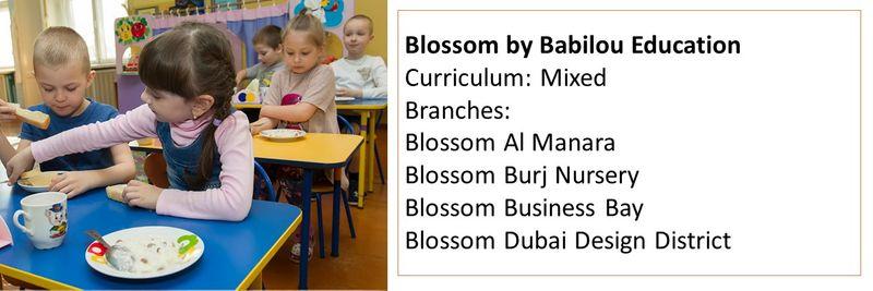 Nurseries in UAE 6
