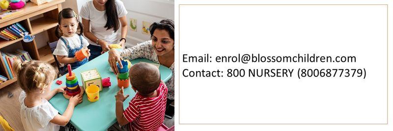 Nurseries in UAE 8