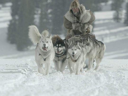 TAB 200129 The Great Alaskan Race 11-1580303642402