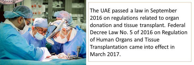Organ transplant 1