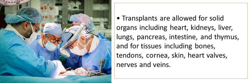 Organ transplant 5