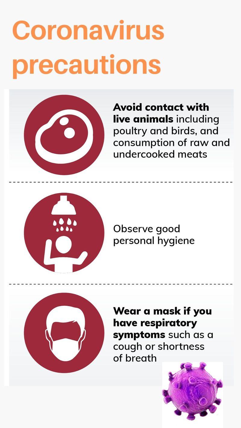 flu vs corona virus