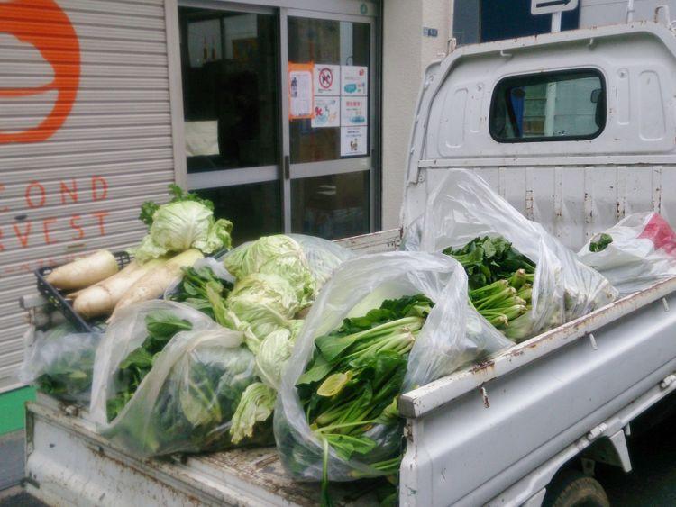 NAT Second Harvest Japan ExpoLive-1581091104836