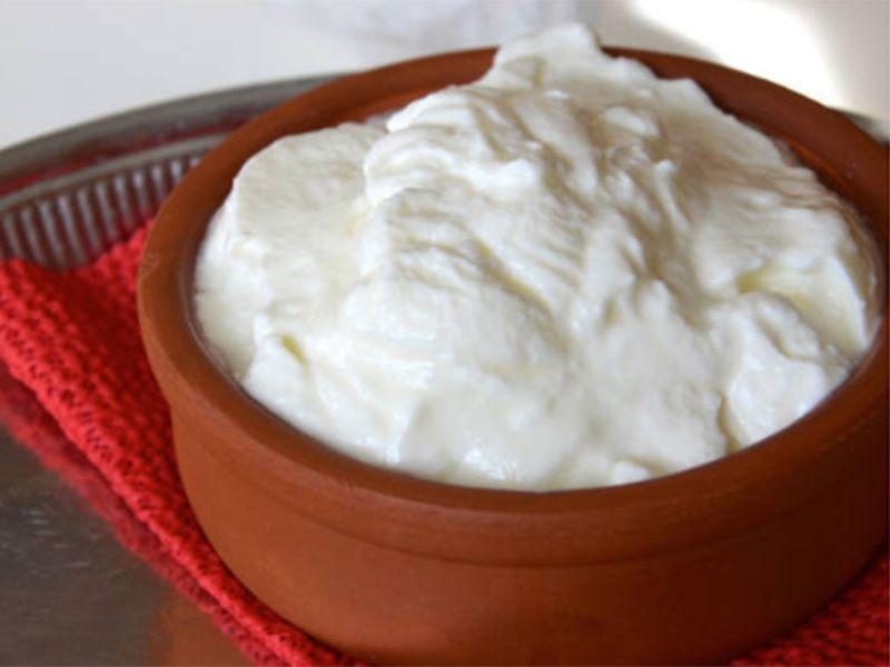 yogurt, curd