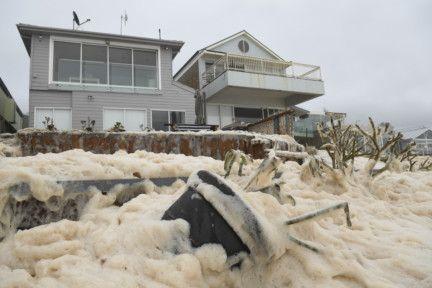 wld_sydney foam-1581327663099