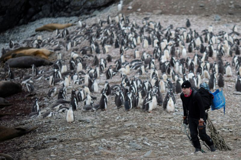 Copy of 2020-02-11T000215Z_592113072_RC20YE9XSBWB_RTRMADP_3_CLIMATE-CHANGE-ANTARCTICA-PENGUINS-1581423687712