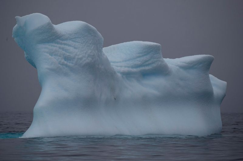 Copy of 2020-02-12T174812Z_1619522461_RC25ZE9MD3OV_RTRMADP_3_ANTARCTIC-ENVIRONMENT-1581605104633