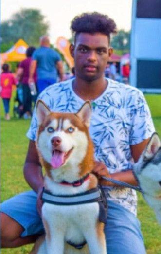 NAT 200212 missing dog 1-1581682382466