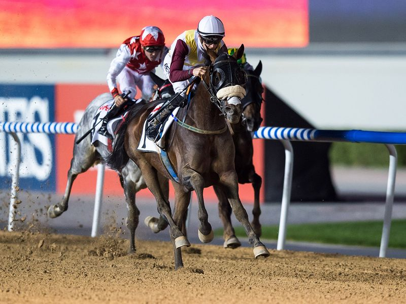 Race 1 at Horse racing action at Meydan for Dubai World Cup Carnival on February 13