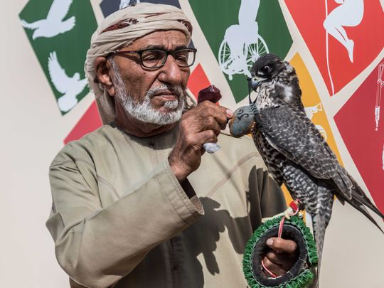 Oldest UAE falconer rules the roost at falconry racing