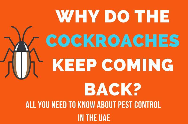Pest control 2