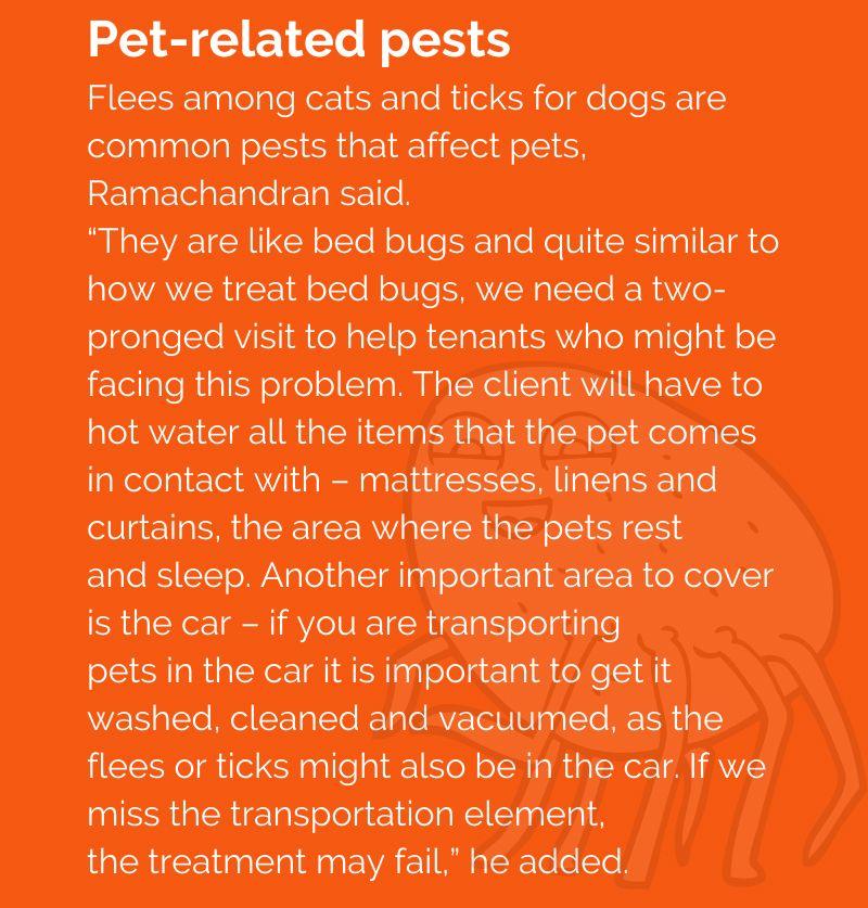 Pest control 33
