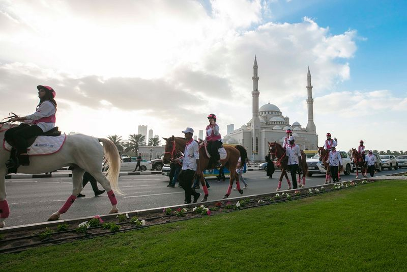 Pink Caravan moving through Sharjah