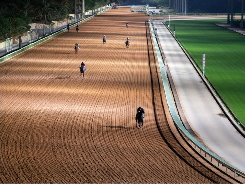 Track work at King Abdulaziz Racetrack