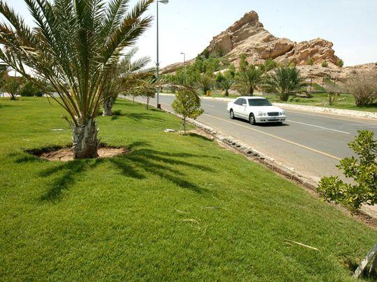 Al Ain Garden City