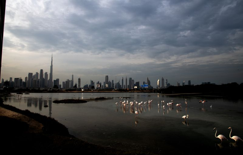 Copy of 21 Dubai Skyline 2019 [1]-1583226795337