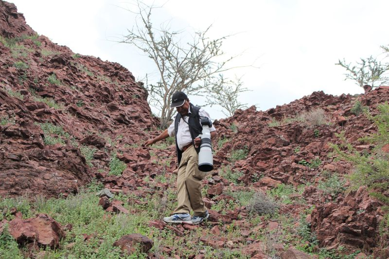 23- Dr Reza Khan negotiating a downhill journey at a hill ladden with winter annuals-1583567251149