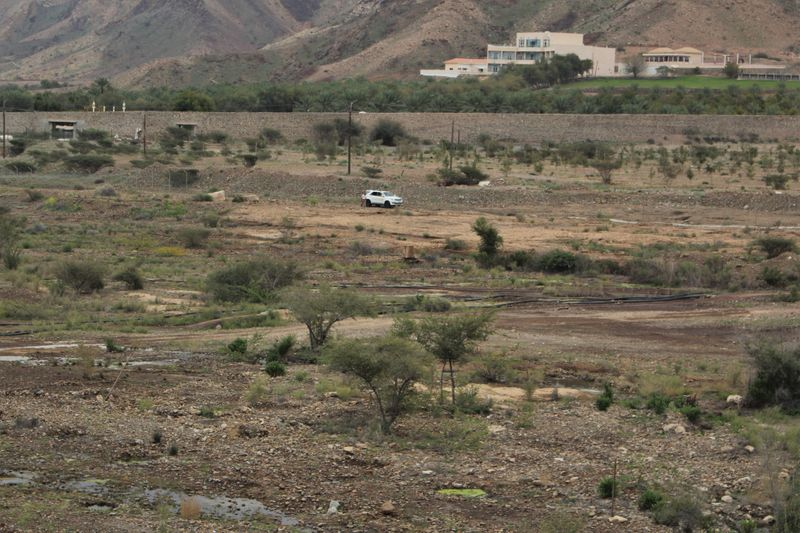 25- One can green patches in every direcvtion in a wadi area in the hills-1583567255271