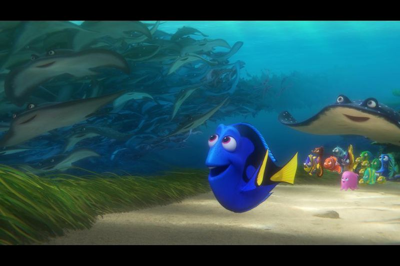 TAB 200307  Finding Dory-1583590298524