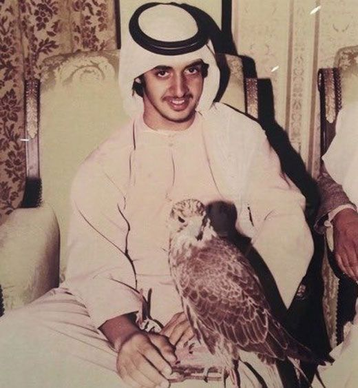 MBZ with falcon