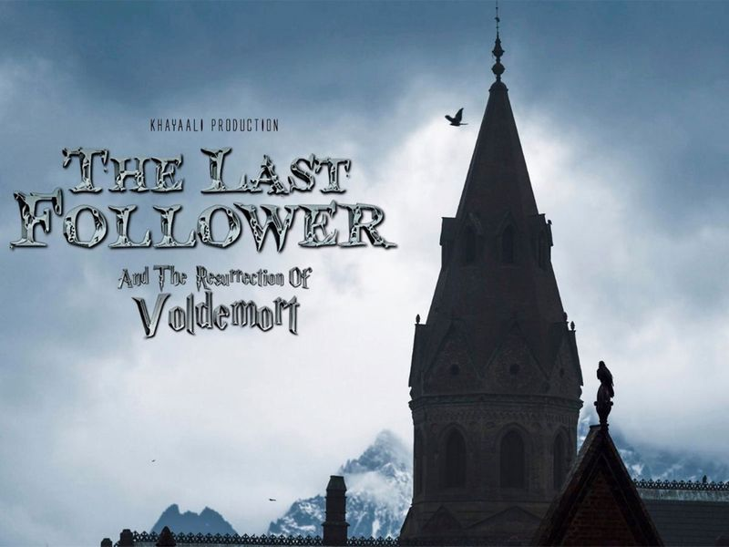 Poster of the Last Follower