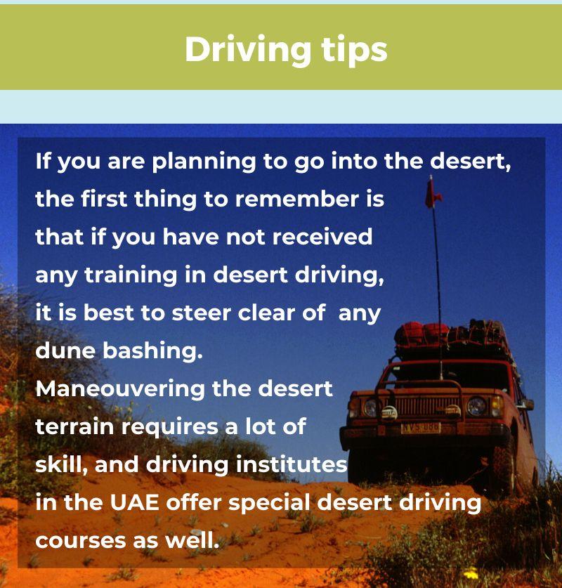 desert guide 12