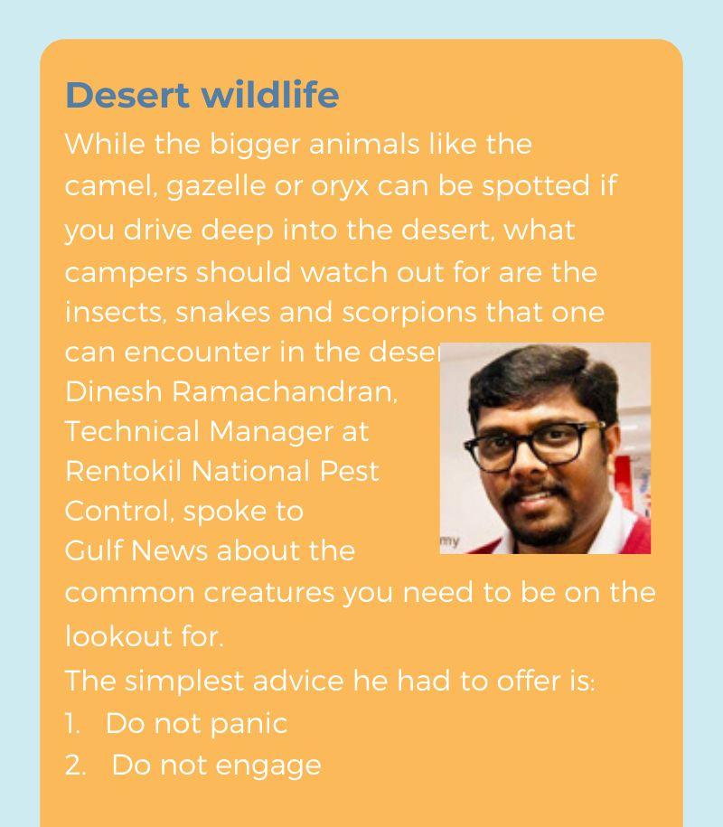 desert guide 17