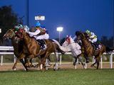 Somoud, ridden by Pat Cosgrave, wins in Abu Dhabi