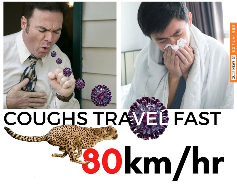Coughs travel at 80 km/hr, the speed of a lion (also at 80km/hr), though it's slower than a cheetah's speed (93 km/hr))