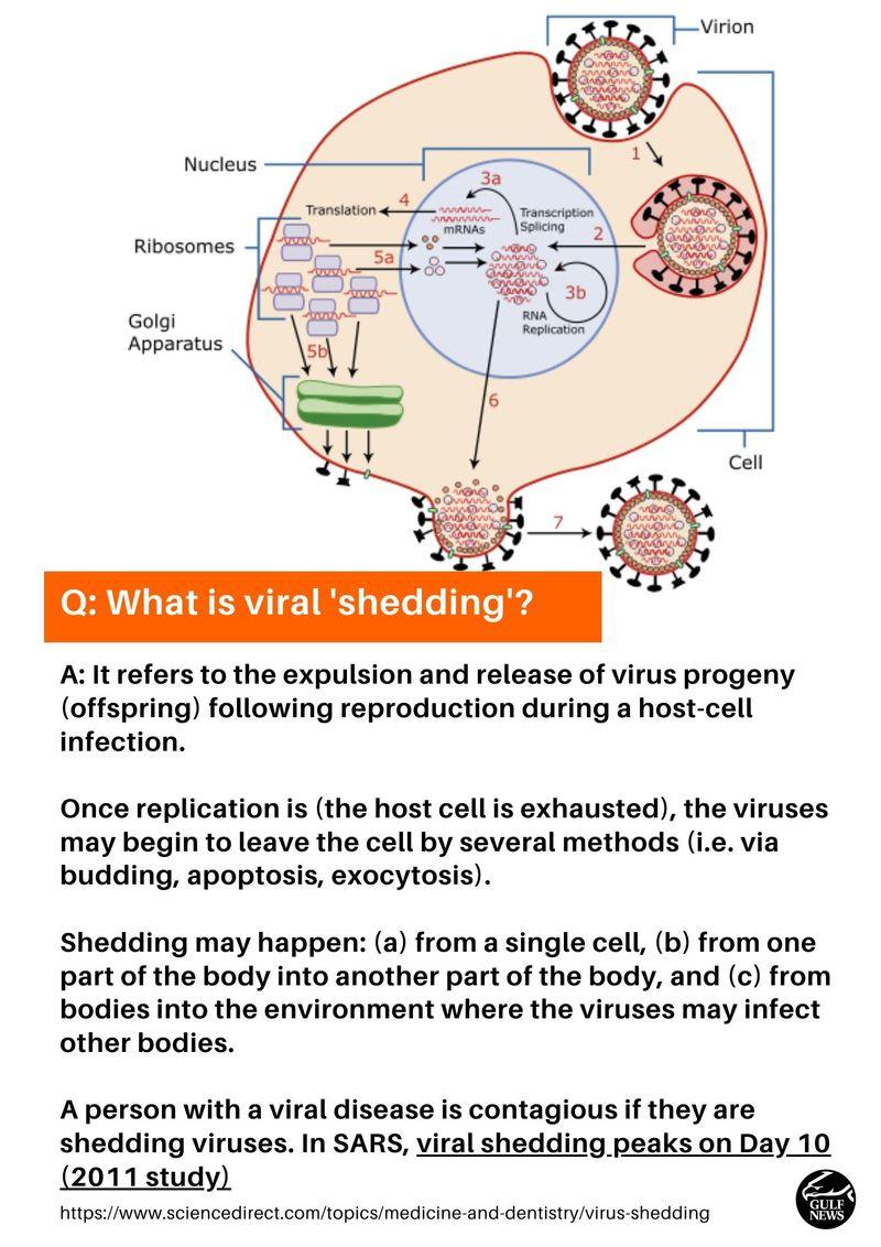Virus shedding defined
