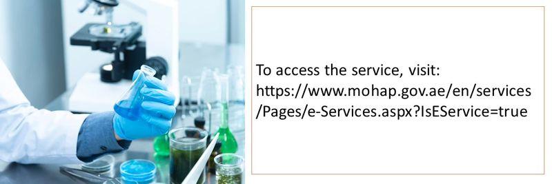 online gov services 18