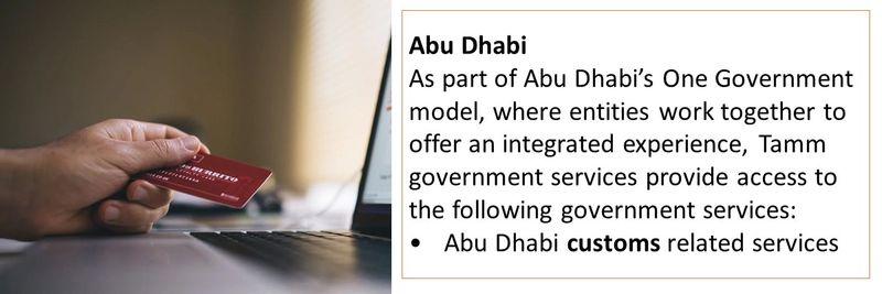 online gov services 3