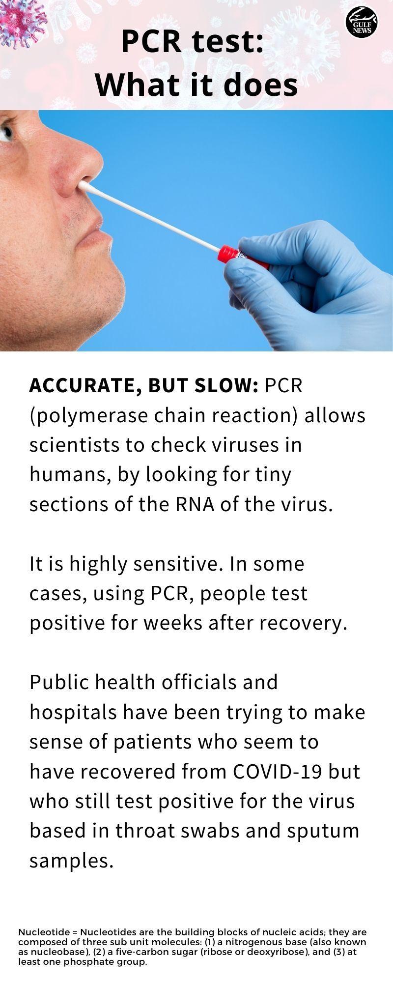 PCR 08
