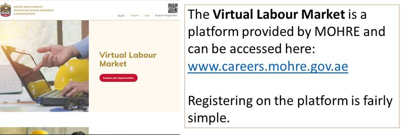 Virtual Labour Market 12