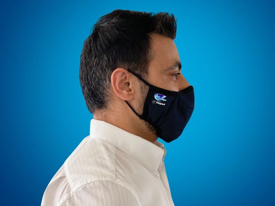 Fine Hygienic Holdings Fine Guard face mask