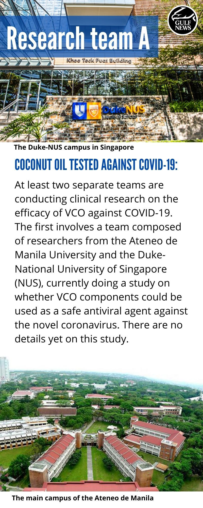 Team A coconut research