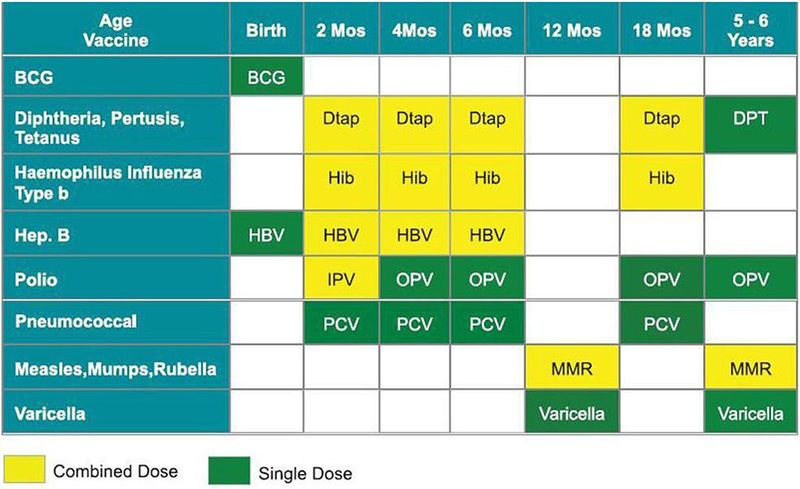 VaccineSchedule01