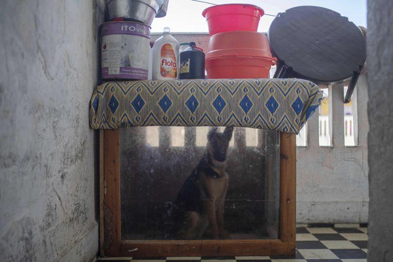 Copy of Virus_Outbreak_Morocco_Photo_Gallery_25575.jpg-b2264~1-1586253136550