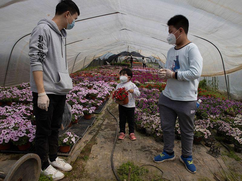 Virus_Outbeak_China_Struggling_Farmers