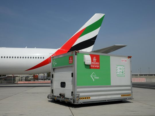 Cargo flight at DXB