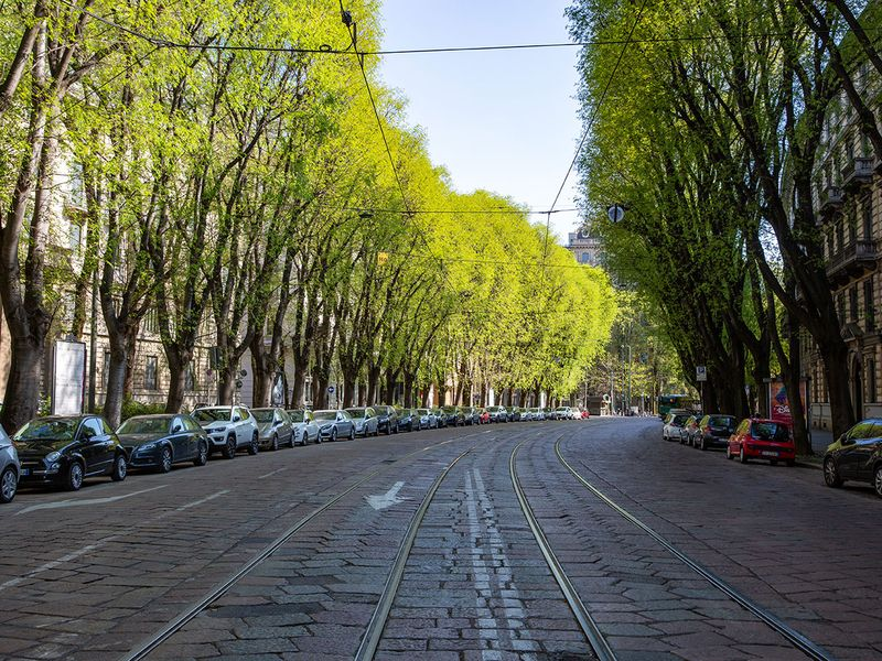 Parked cars line a street devoid of traffic in Milan, Italy.