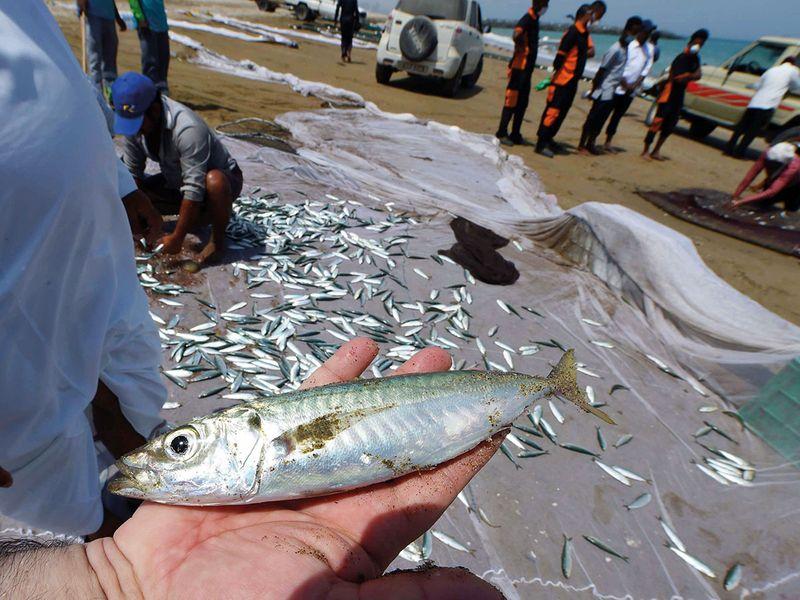 NAT-200408-KALBA-FISHING12-(Read-Only)