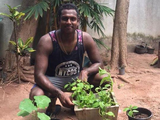 Sri Lanka cricketer Angelo Mathews planting trees