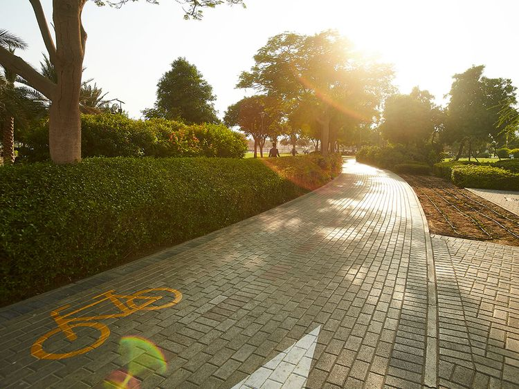 Barsha-Pond-Park00001_1.jpg