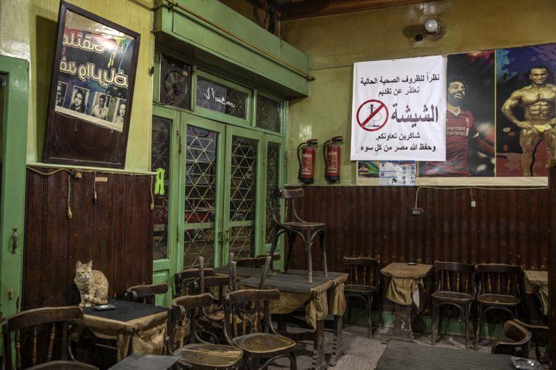Copy of Virus_Outbreak_Egypt_Photo_Essay_54728.jpg-e07d1-1586952342123