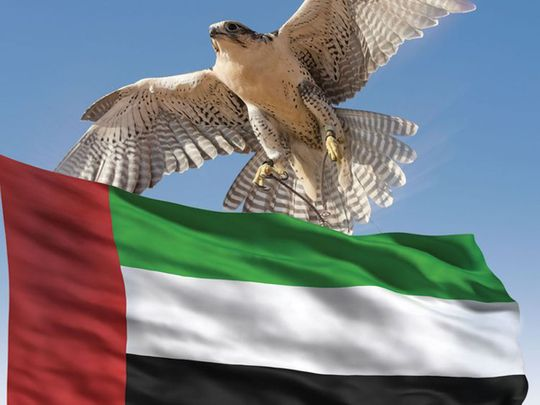 COVID-19: UAE residents sang the national anthem