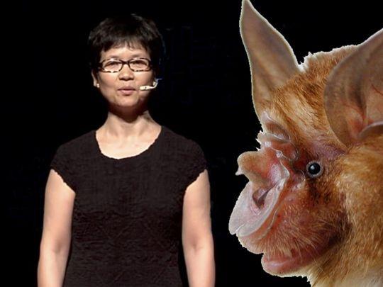 Chinese Bat Woman_001